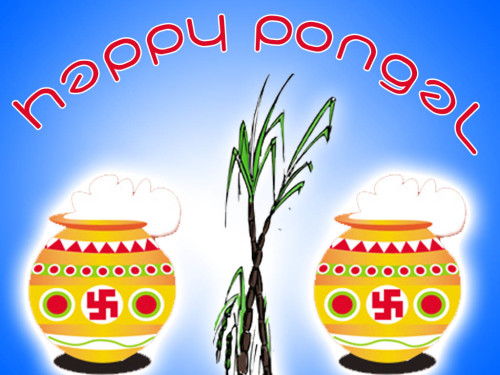 Happy Pongal Pots Graphic