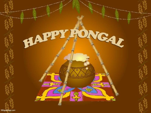 Happy Pongal Preparation Of A Pongal Dish Graphic