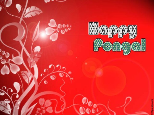 Happy Pongal Red Background Graphic