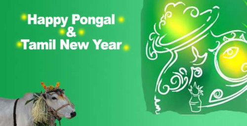 Happy Pongal & Tamil New Year