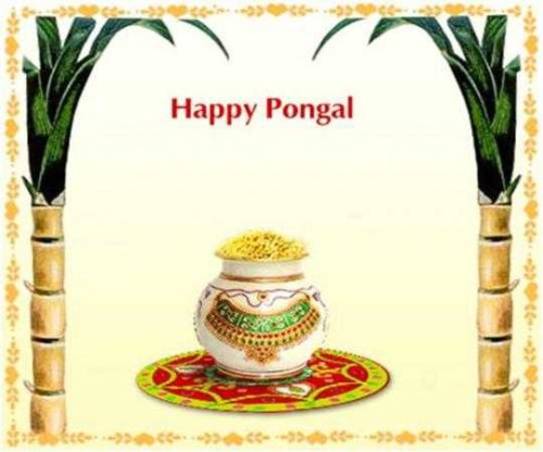 Happy Pongal Wishes Graphic For Share On Facebook