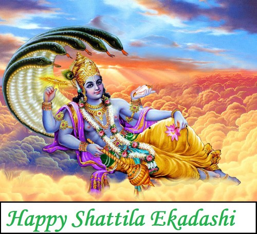 Happy Shattila Ekadashi