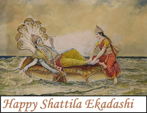 Happy Shattila Ekadashi2