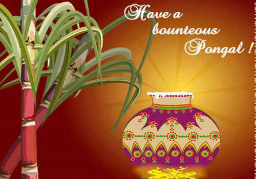 Have A Bounteous Pongal Glitter
