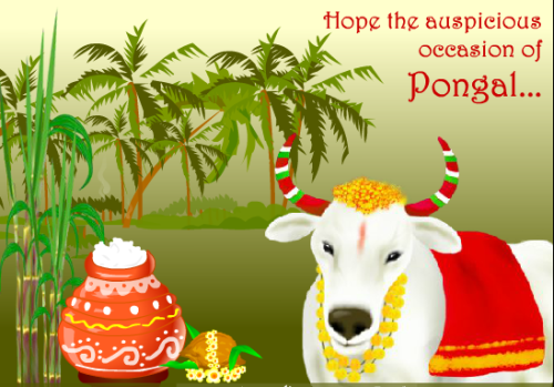Hope The Auspicious Occasion Of Pongal