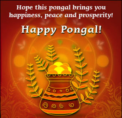 Hope This Pongal Brings You Happiness, Peace And Prosperity Happy Pongal