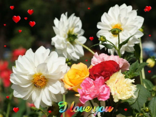 I Love You With Colourful Flowers