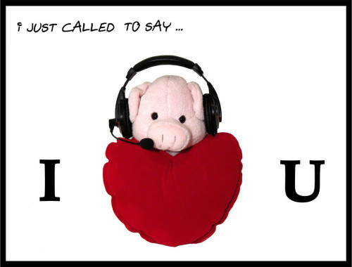 I Love You With Pig TeddY