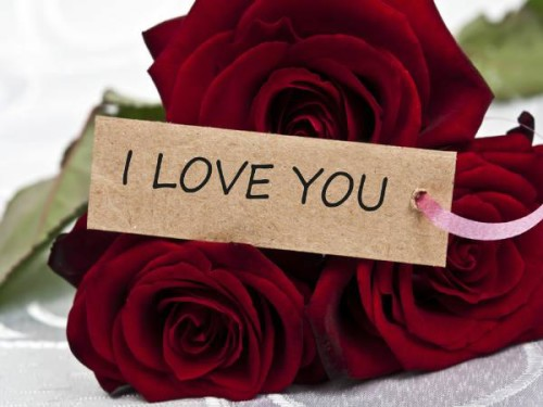 I Love You With Red Rose