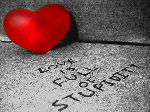 Love Is Full Of Stupidity
