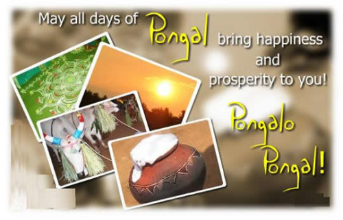 May All Days Of Pongal Bring Happiness And Prosperity To You Pongalo Pongal