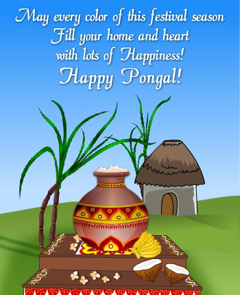 May Every Color Of This Festival Season Fill Home And Heart With Lots Of Happiness Happy Pongal