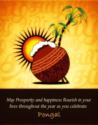 May Prosperity And Happiness Flourish In Your Lives Throughout The Year As You Celebrate Pongal