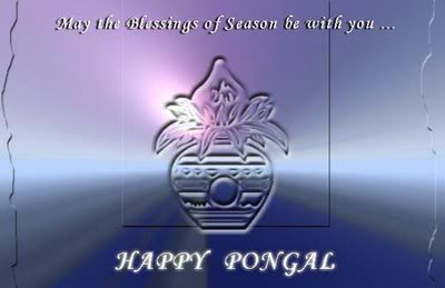 May The Blessings Of Season Be With You Happy Pongal