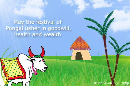 May This Festival Of Pongal Usher In Goodwill Health And Wealth