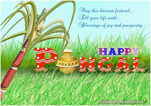 May This Harvest Festival Fill Your Life With Blessings Of Joy And Prosperity Happy Pongal