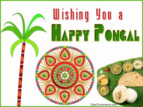 Wishing You A Happy Pongal Graphic