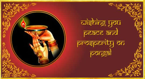 Wishing You Peace And Prosperity On Pongal