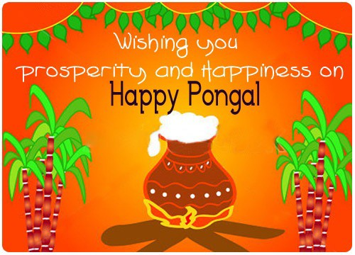 Wishing You Prosperity And Happiness On Happy Pongal