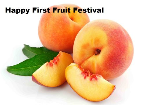 15-Best-Fruits-For-Fast-Weight-Loss-peaches